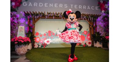 Minnie's Garden Party