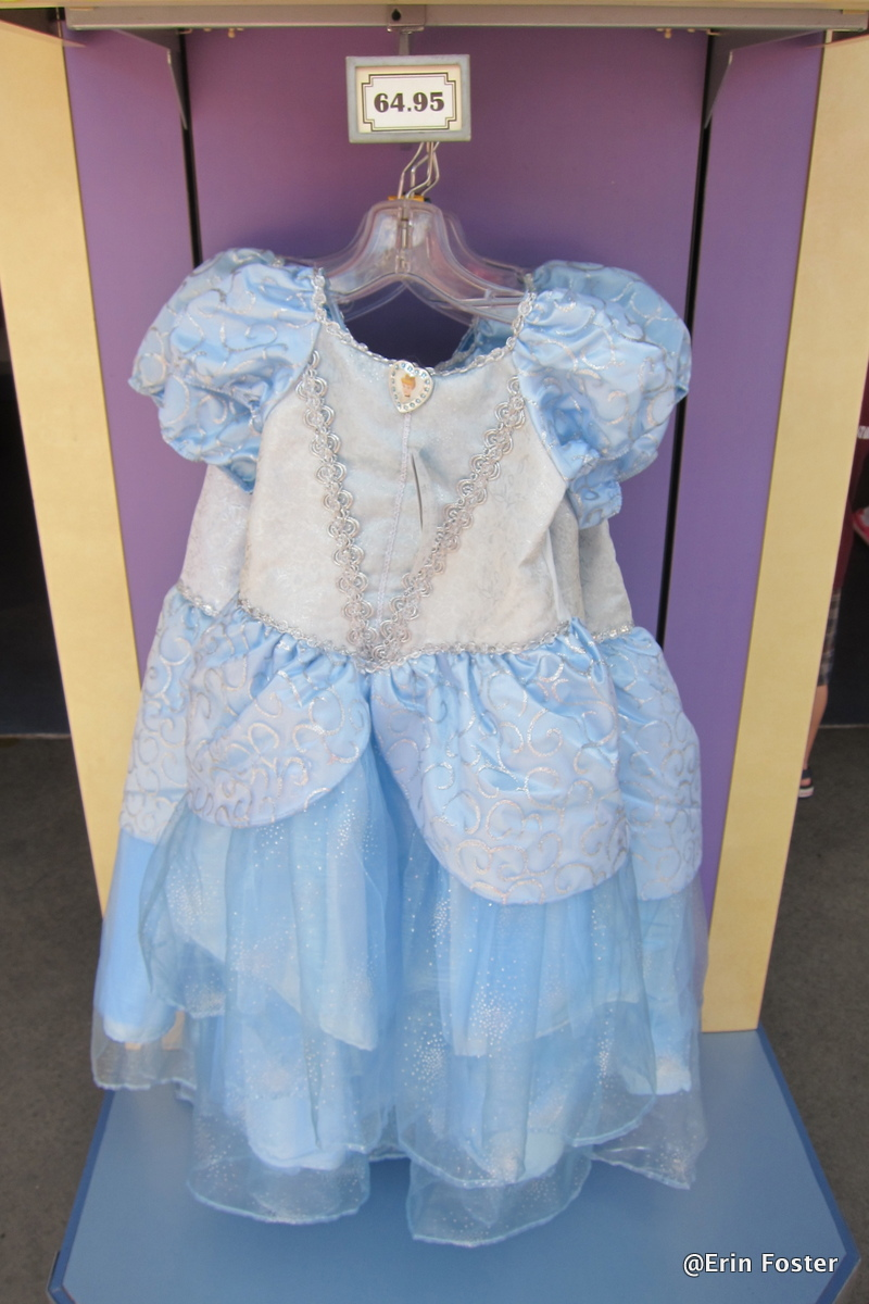 60449ded4dc99 Everything You Ever Wanted to Know About Princess Dresses at Disney World