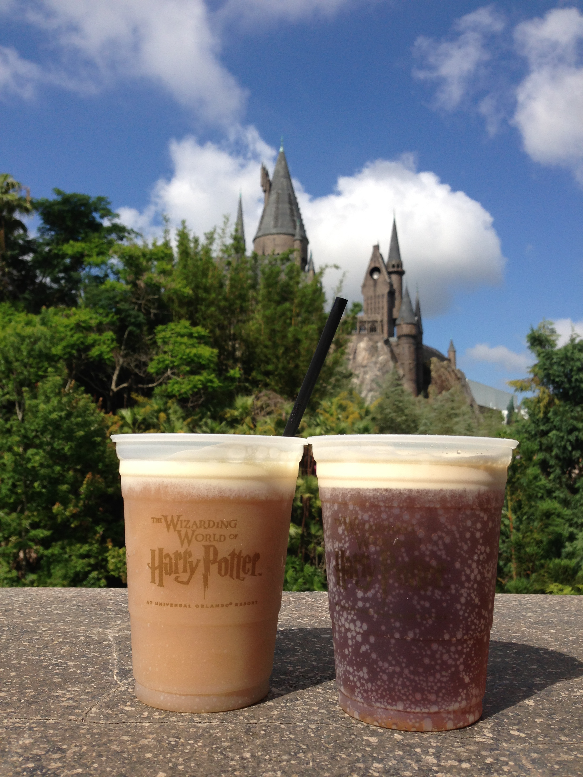 Frozen and Unfrozen Butterbeer