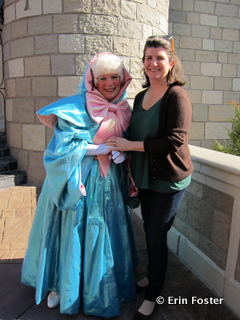 """Face"" characters like princesses and the Fairy Godmother are happy to engage you in conversation."