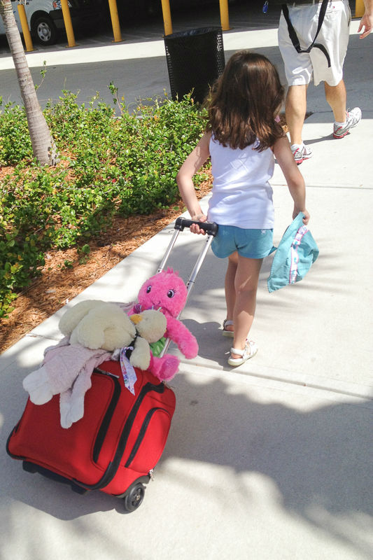 Disney Cruise Trip Planning102 - Carry On