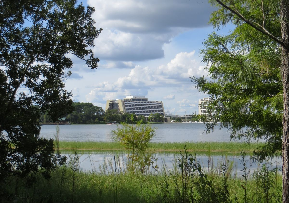 Contemporary Resort in the Distance