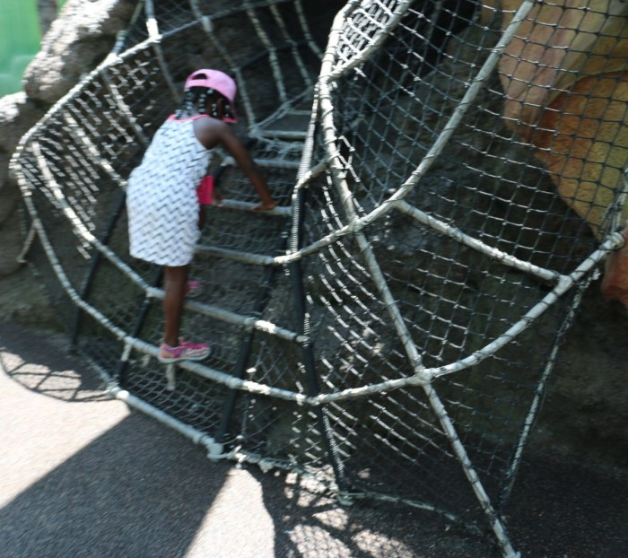 Zombies have difficulty navigating the rope crawls at the Honey, I Shrunk The Kids play area -- Photo © Erin Foster