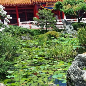 Pretty Pond in China