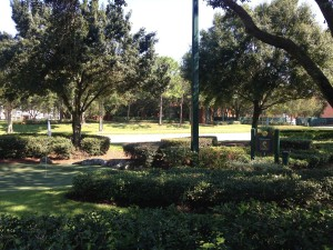 Fairways course at Fantasia Gardens - Natalie Reinert