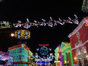 Osborne Family Spectacle of Dancing Lights (photo by Sarah Graffam)