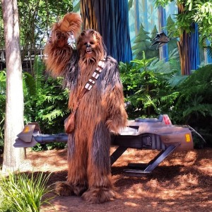 Hollywood Studios, the place where you can give Chewbacca a high five. © Katie McNair