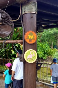 Look for small signs to show you where you can earn a badge, and note the one on top which shows you can sign up as a Wilderness Explorer.