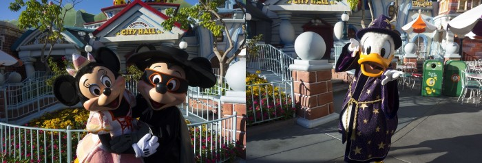 Several characters are out in special Halloween-party-only costumes during the Toontown Pre-Party.