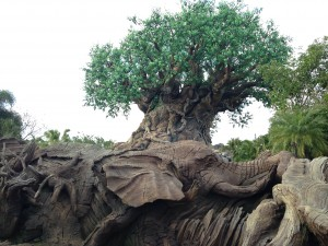Disney's Animal Kingdom's Tree of Life