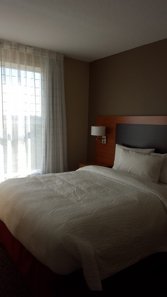 Flamingo 2 Bedroom Suite: A Look At The Flamingo Crossings Hotels Near Disney World