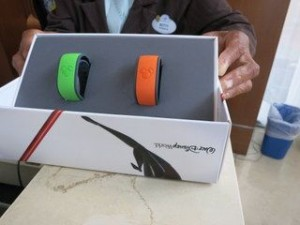 MagicBands are included with your Disney resort stay.