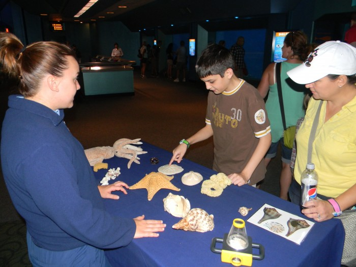 Cast members provide a variety of learning opportunities for young visitors.